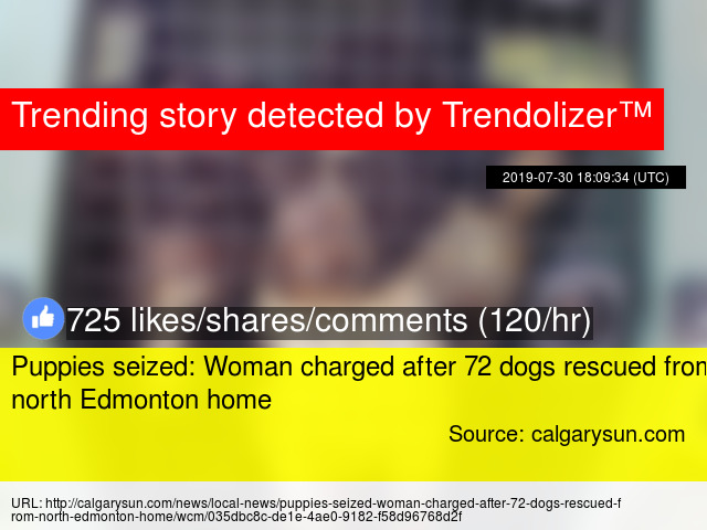 Puppies seized: Woman charged after 72 dogs rescued from